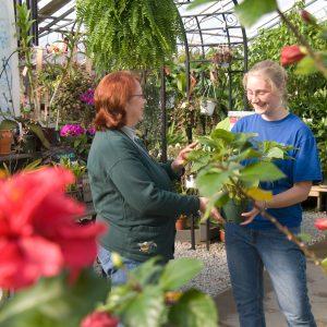 Alta Florist & Greenhouse