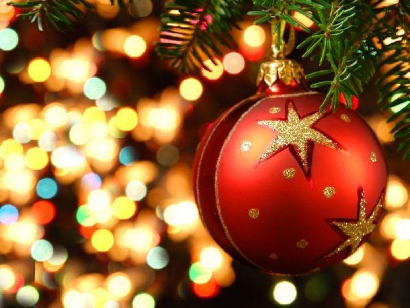 Member Spotlight: Herlihy Christmas House