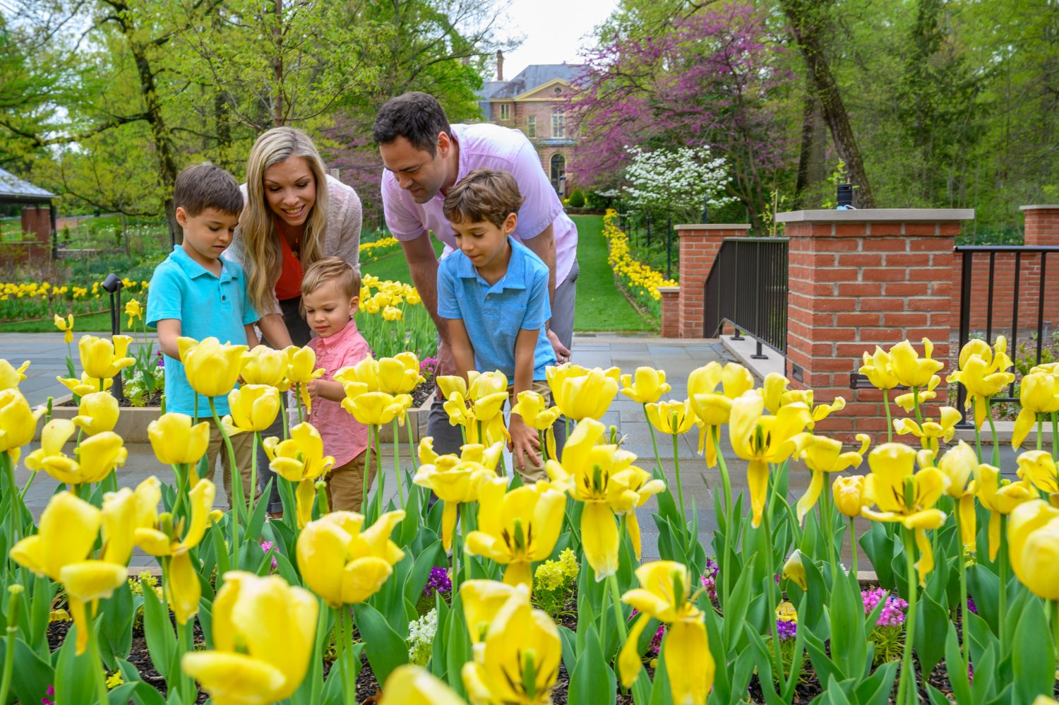 Spend a Day at Kingwood Center Gardens