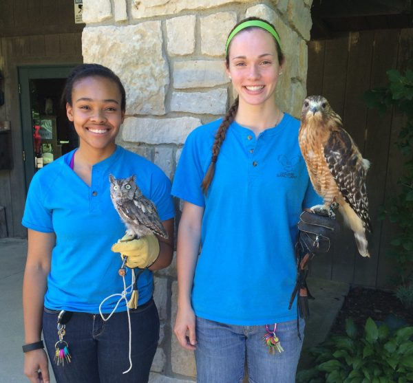 Avian Encounters at Ohio Bird Sanctuary