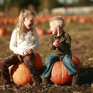 The Barnyard Park – Fall Family Fun