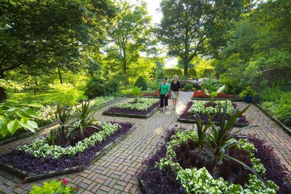 Garden to Glass: Building Cocktails with Fresh Herbs at Kingwood Center Gardens