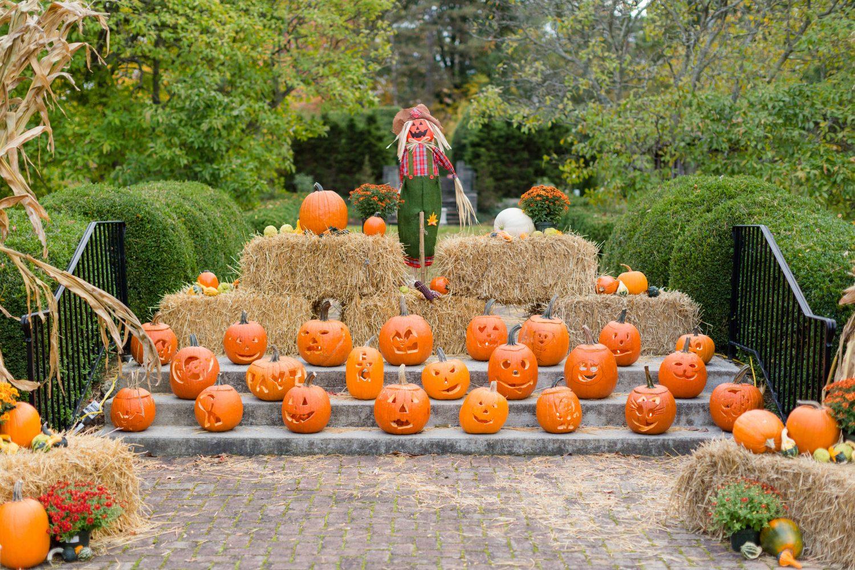 Pumpkin Pass Weekend Giveaway