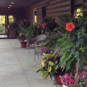 Planters with red flowers on The Cabin porch