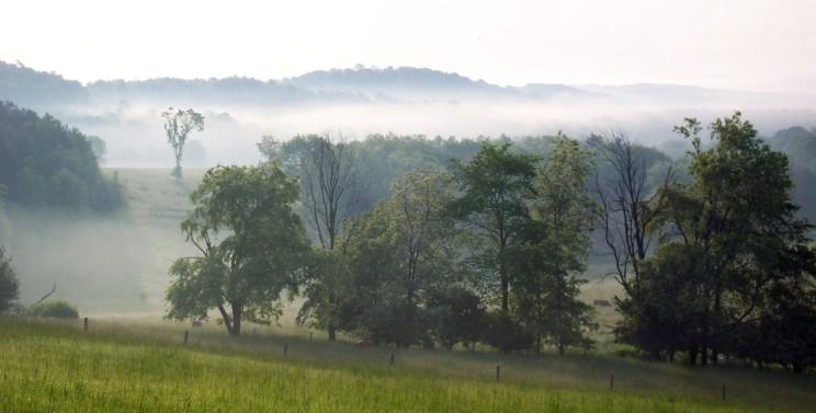 Mist through rolling hills