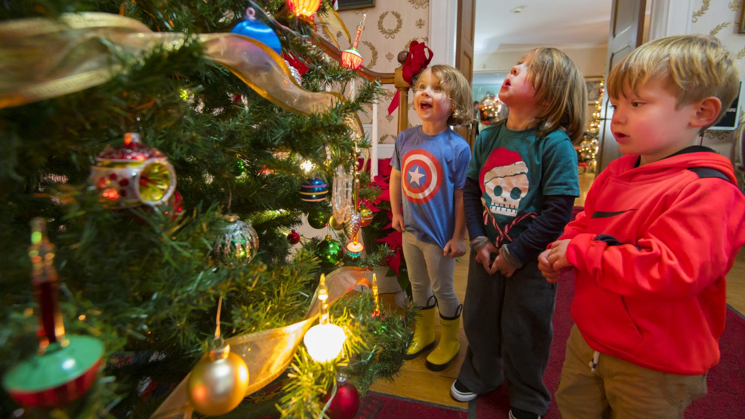 Special Holiday Hours for Featured Attractions