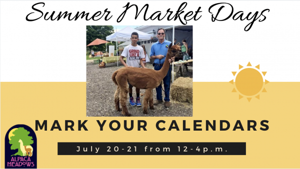 Summer Market Days at Alpaca Meadows