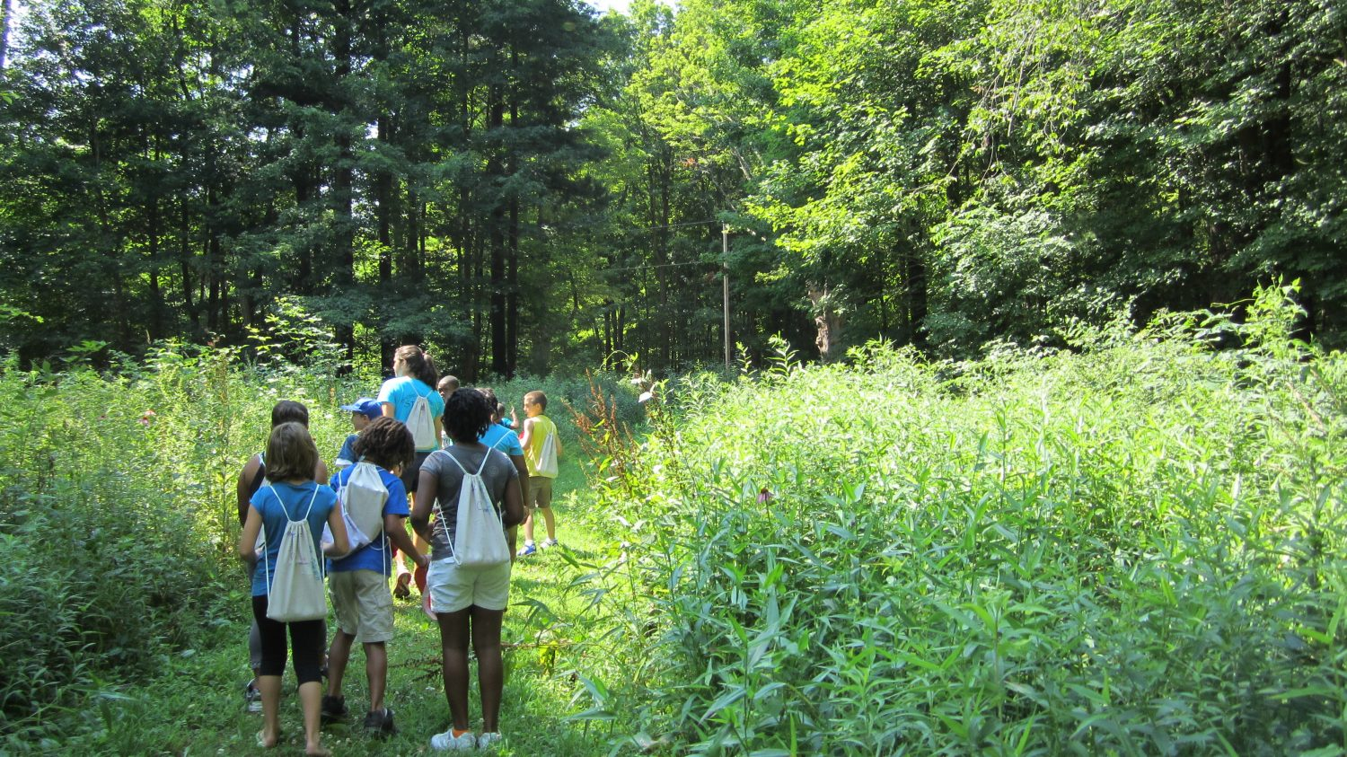 Celebrate the Great Outdoors with 2019 Mohican Wildlife Weekend