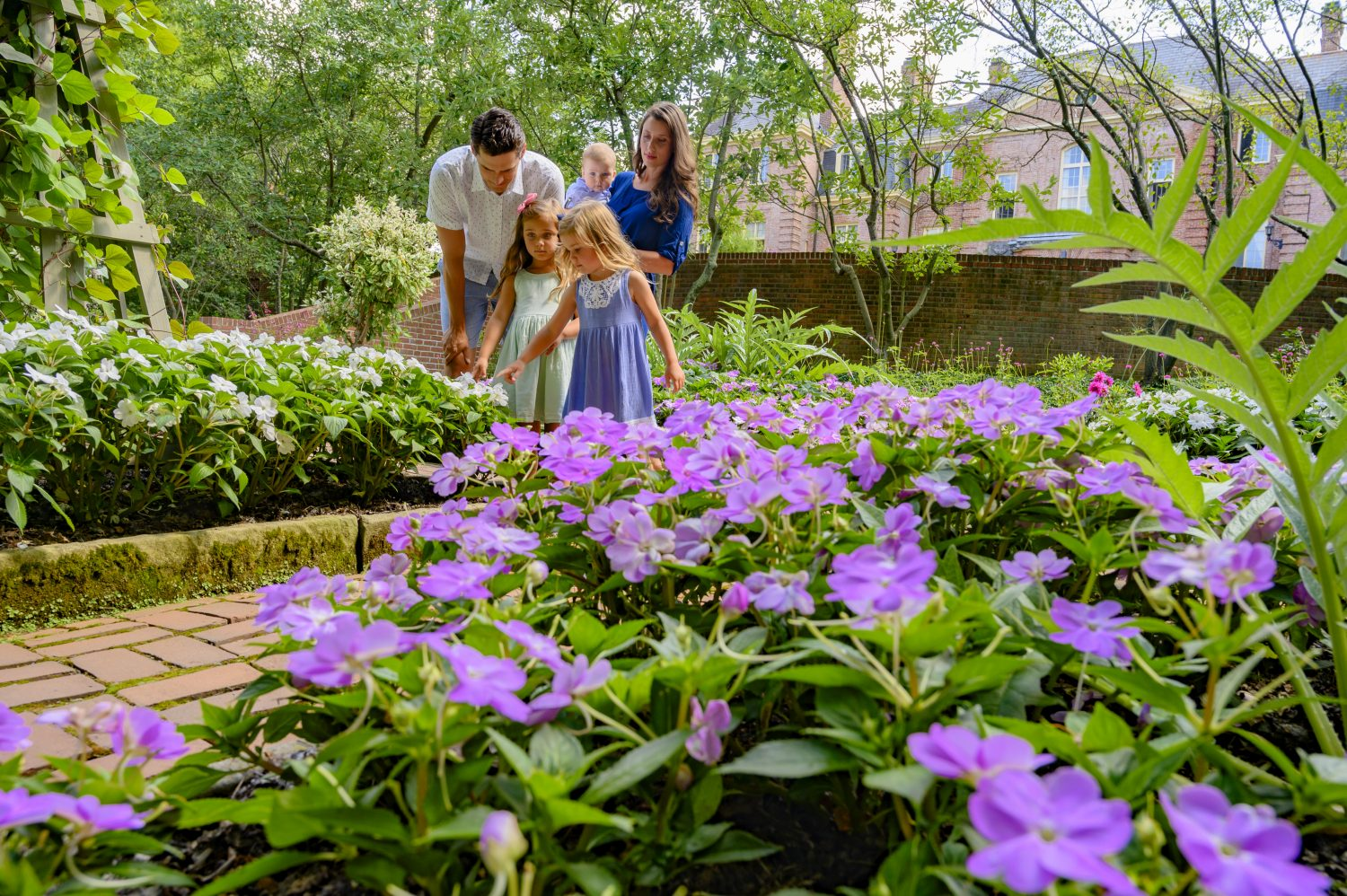 Australian Garden Experience at Kingwood Center Gardens