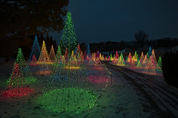 Christmas at Kingwood Center Gardens