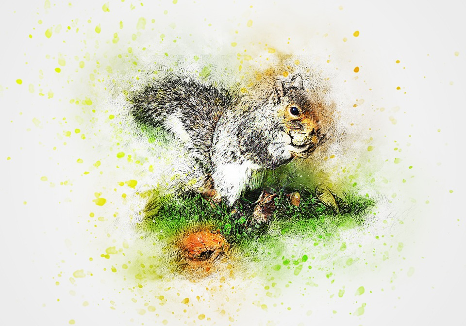 Storytime Series: Squirrels at Kingwood Center Gardens