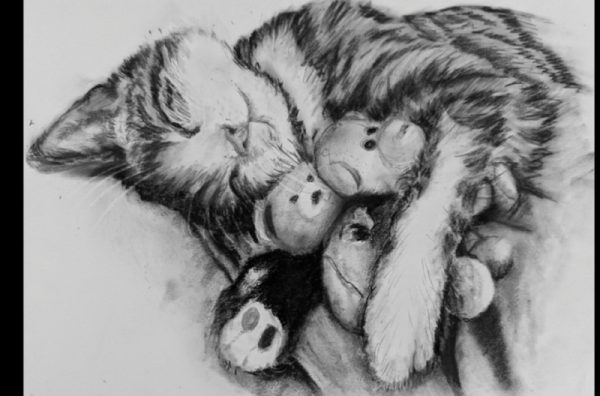 Purr-fect Animal Drawing (6 weeks class)