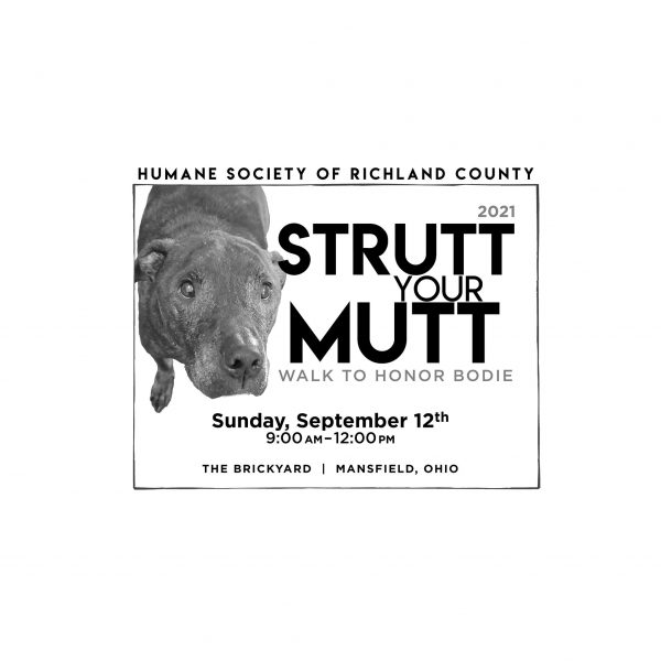 Strutt Your Mutt (Walk to Honor Bodie) in The Brickyard